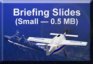 Freewing Small Briefing Slides